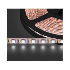 LEDS-5MP/RGBW
