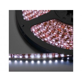 LEDS-5MPL/WS